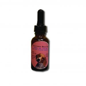 Alaskan Salmon 500mg CBD Oil for Pets